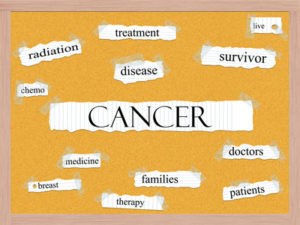 Terminal cancer diagnosis, what now?